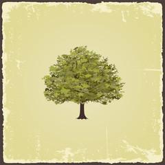 Old tree on vintage paper. Vector illustration