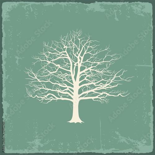 Old bare tree on vintage paper. Vector illustration - 70902148
