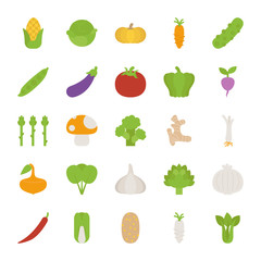 Vegetables  icons , flat design