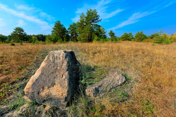 old stone on meadow