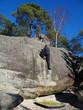 Escalade en forêt de Fontainebleau (site de l'Eléphant)