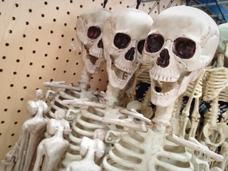 Halloween skeletons hanging at the store.