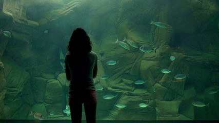 People looking at the fishes at the aquarium
