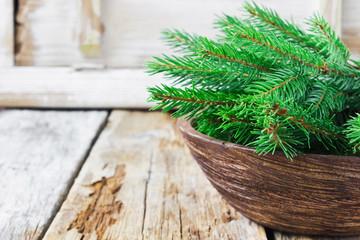 branches of fir