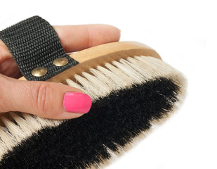 small  brush for grooming horses with hand  on white