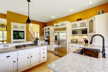 Farm house interior. Luxury kitchen room interior