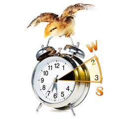 Daylight saving time, clock with chick