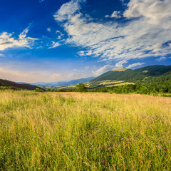 field near home in mountains