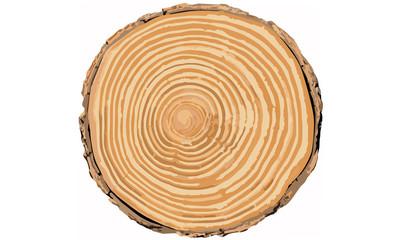 Baumringe Jahresringe