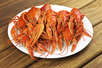 Tasty boiled crayfishes on a wooden table