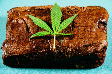 Pot Brownie 10
