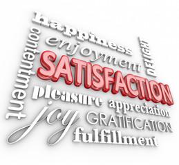 Satisfaction 3d Word Collage Happiness Enjoyment Customer Servic