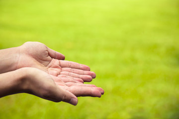 closeup of hands with green background in outdoor