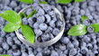 Fresh Blueberries (seamless loopable)