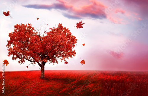 Staande foto Foto van de dag Autumn landscape with heart shape tree