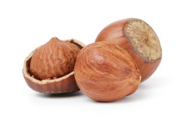 organic hazelknuts with kernel