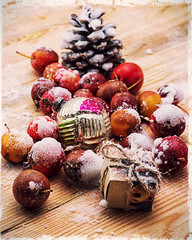 snow-covered fruits of dwarf apples and Christmas decorations