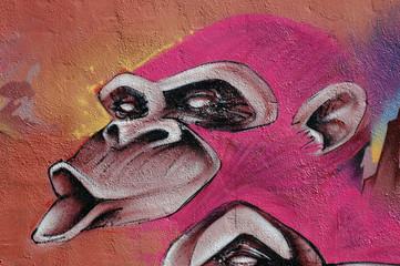 La mirada del simio rosa
