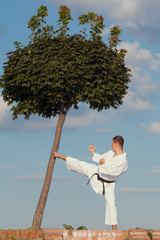 Young man practicing martial arts in nature