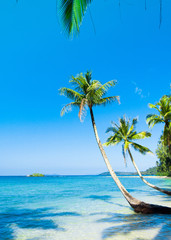 Idyllic Island Beautiful Beach