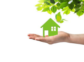 Green home on hand