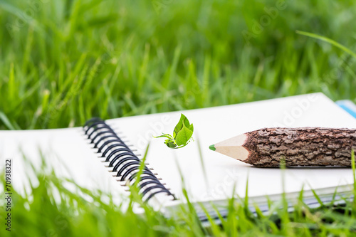 Pencil and butterfly design on notebook in the garden - 70938322