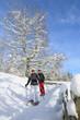 Wandern in winterlicher Natur