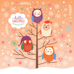 cute owls on the tree, Christmas background