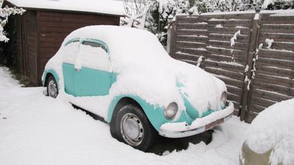 Cox sous la neige