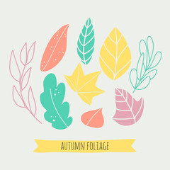 Autumn foliage set. Cute hand drawn leaves