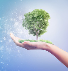 Eco concept. Magic hand of nature holding tree.