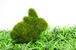 Easter bunny on grass - 70946391
