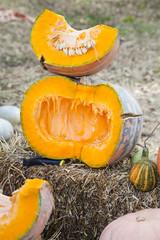 Half cut pumpkin outdoors on haystack