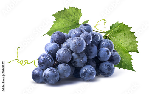 Tuinposter Eten Blue wet grapes bunch isolated on white background