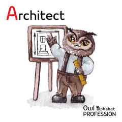 Alphabet professions Owl Architect character on a white