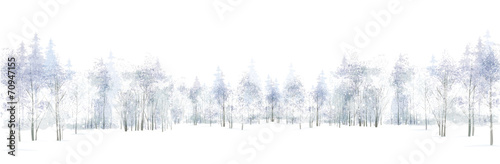 Vector winter scene with  forest background isolated on white.