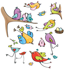 Vector  cute birds cartoons.
