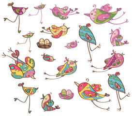 Vector cute  birds.