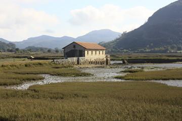 Parque natural de Oyambre, Santander. Cantabria