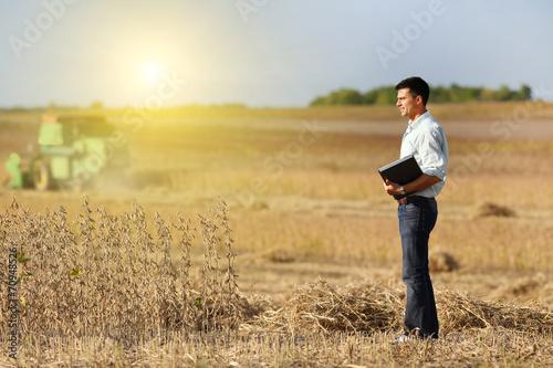 Soybean harvest - 70948526