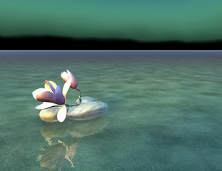 beautiful tranquil zen scene with rocks and flower