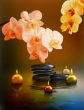 Yin und Yang, Orchideenblüten mit Teelichter