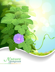 Nature Fantasy:  Photosynthetic plant
