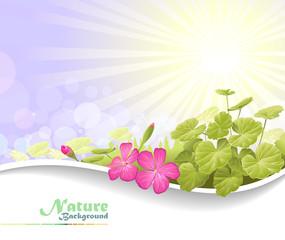 Nature Fantasy: Gorgeous plants