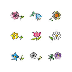 Set of Nine Flowers Isolated on White Background