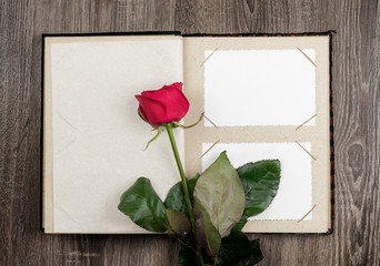photo album and roses on wood background