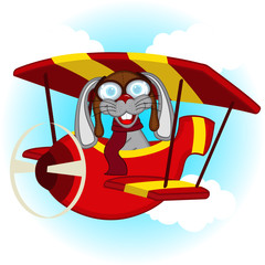 rabbit flying on plane - vector  illustration, eps