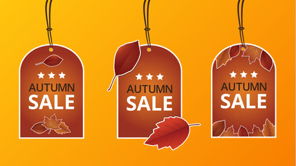 Vector autumn price label with leafs