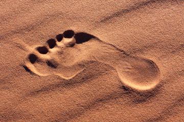 footprint desert