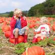 Kids having fun on pumpkin field